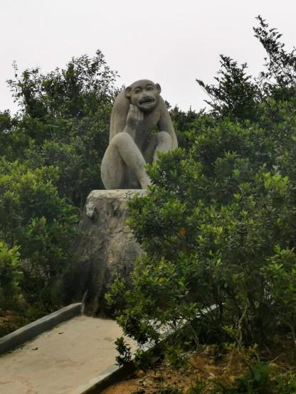 Son Tra (Maymun) Dağı