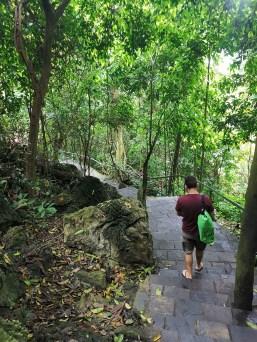 Paradise Cave dönüş yolu