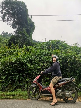 Phong Nha-Ke Bang Milli Parkı