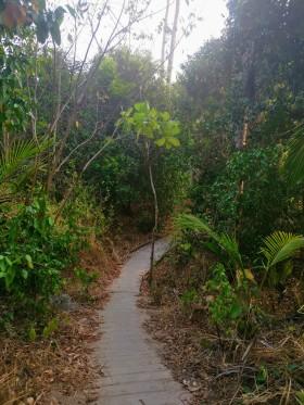 Sai Nuan Beach yolu